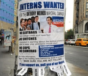 Weiner Iterns wanted